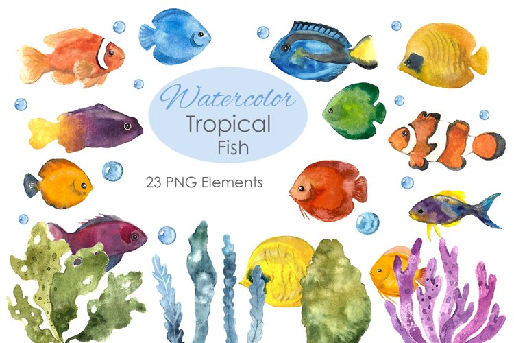 Watercolor Clipart. Colorful fish. Fish clipart example image 1