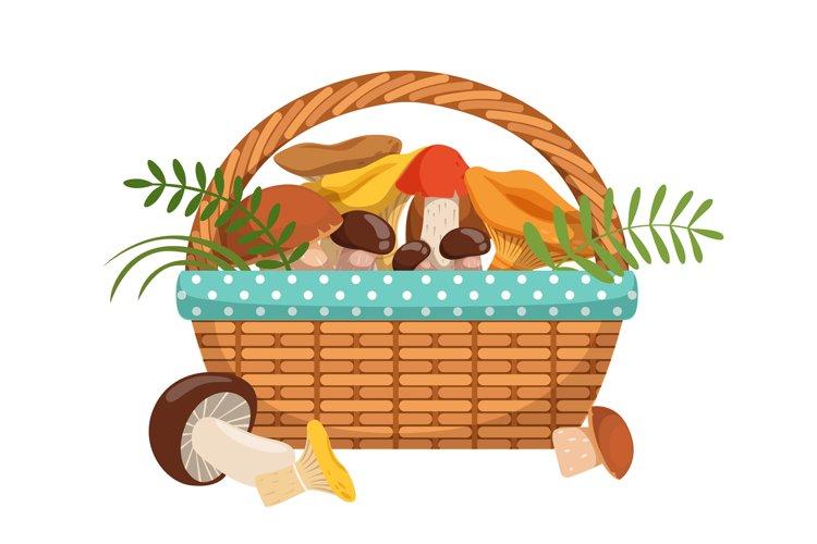 Different fresh mushrooms in basket. Vector illustrations se example image 1
