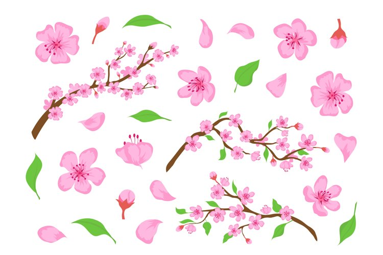 Blossom sakura pink flowers, buds, leaves and tree branches. example image 1