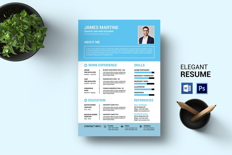 Clean Resume Template, MS Word & Photoshop Template example image 1