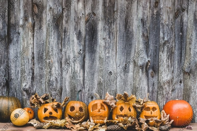 collection of autumn pumpkins for halloween example image 1
