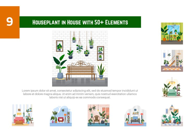 9 Houseplant in House with 50 Elements