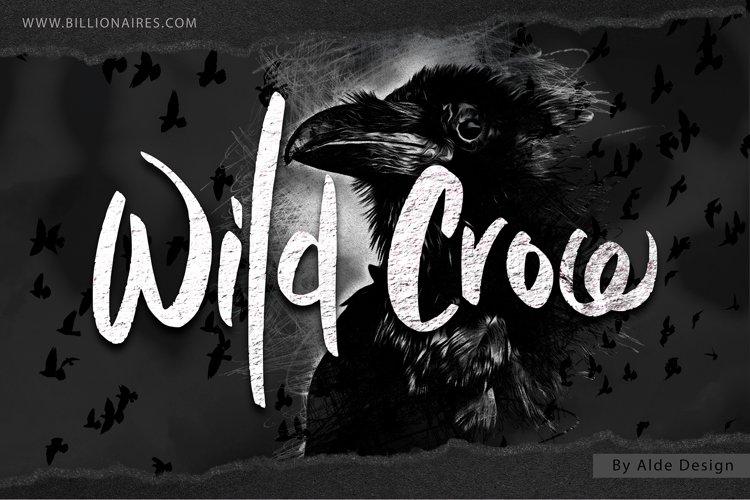Wild Crow - WEB FONT example image 1