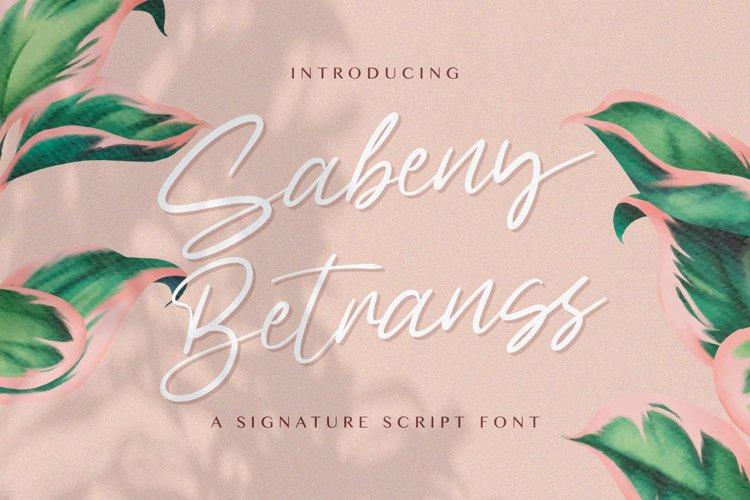 Sabeny Betranss - Handwritten Font example image 1