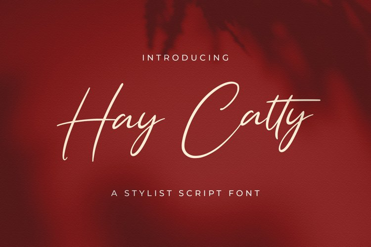 Hay Catty - Handwritten Font example image 1