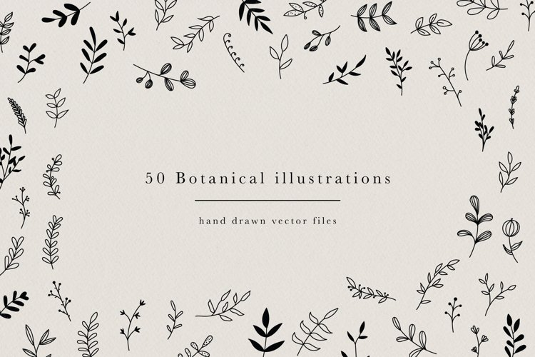 Botanical Hand Drawn Illustrations Leaves Floral Clipart example image 1