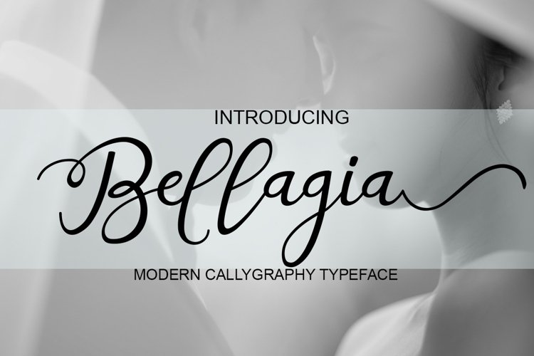 Bellagia example image 1