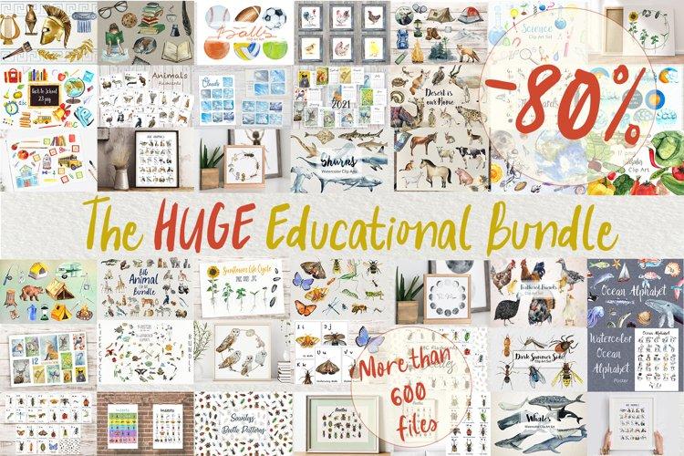The Huge Educational Bundle
