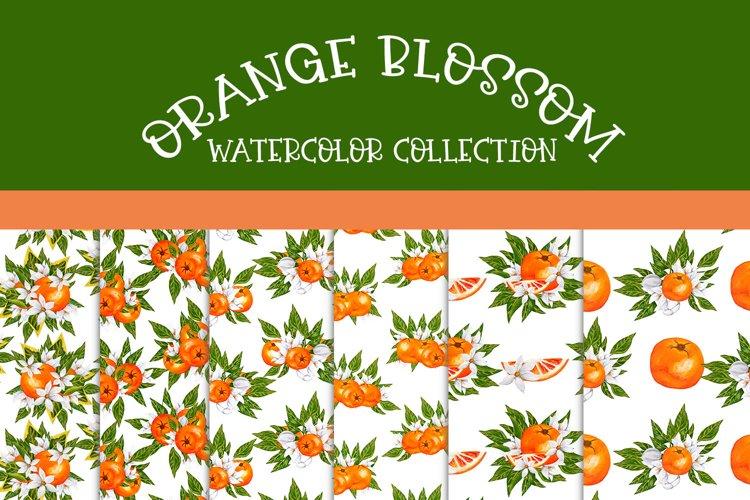 Orange Blossom-Seamless Patterns example image 1
