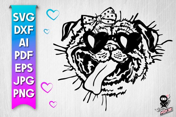 Funny Pug Portrait SVG design