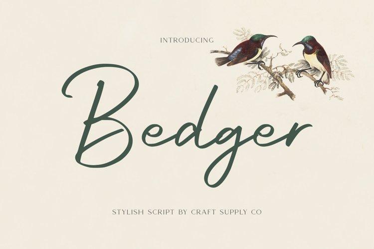 Bedger - Stylish Script Font example image 1