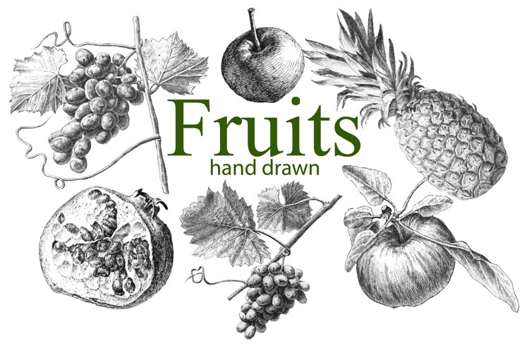 Fruits. Hand drawn. example image 1