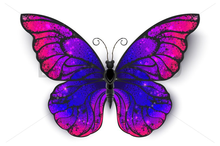 Tricolored Butterfly example image 1
