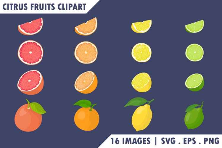 Citrus fruits Clipart set.