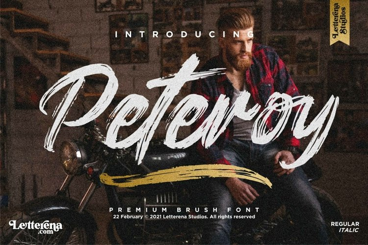 Peteroy - Premium Brush Font example image 1