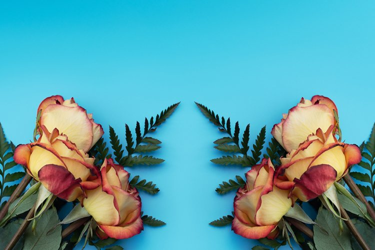 Yellow roses on blue background. example image 1