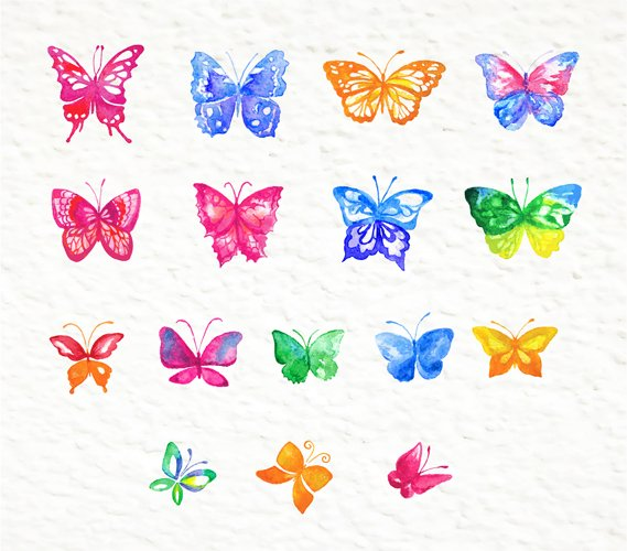 Set of watercolor design elements: rose flowers, plants, butterflies, seamless patterns, splashes.  - Free Design of The Week Design4