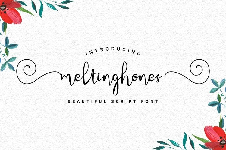 Meltinghones - Beautiful Script Font example image 1