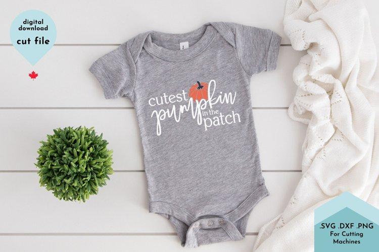 Cutest Pumpkin SVG, Baby shirt svg, Fall svg example image 1