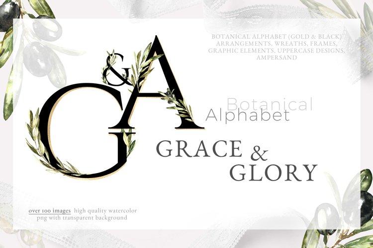 Grace & Glory Botanical Alphabet Olive Watercolor