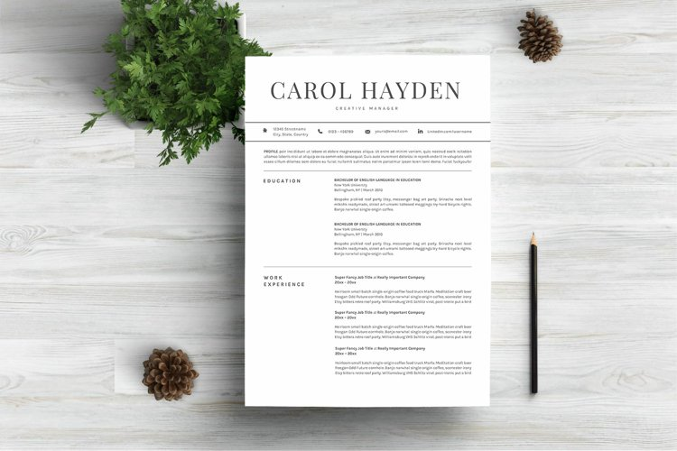 Resume Template 3 Pages example image 1