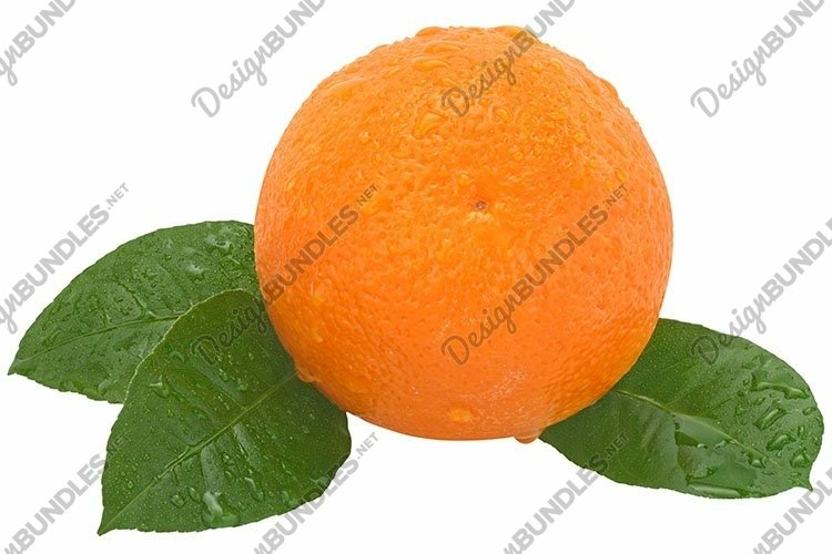 Stock Photo - Ripe orange on a white background.