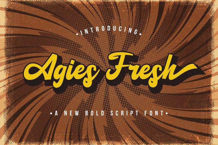 Agies Fresh - Retro Bold Script Font example image 1