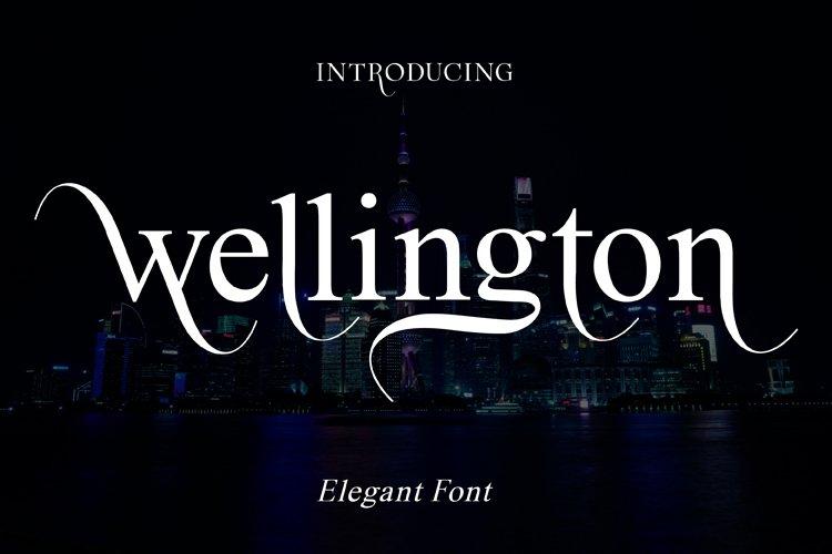 wellington example image 1
