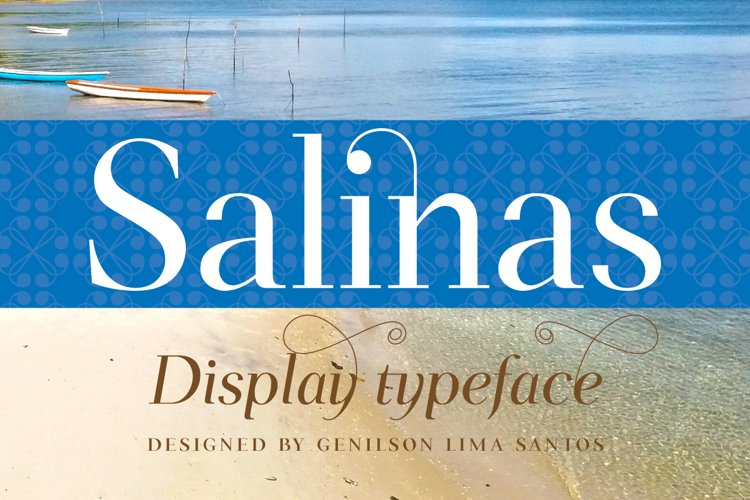 Salinas example image 1