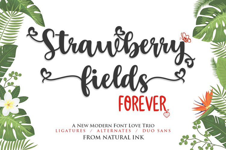 Strawberry Fields Forever- Font Trio example image 1