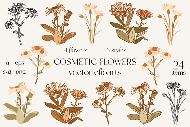 Cosmetic plants vector clipart, wild flowers sublimation