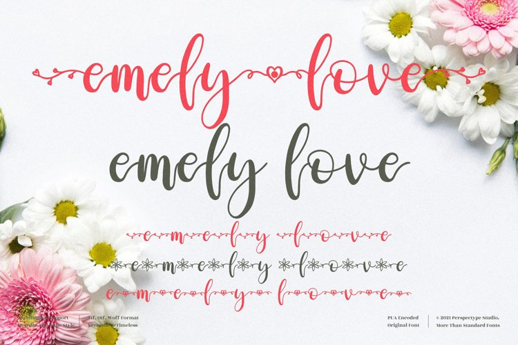 emely love - Beautiful Script Font example image 1