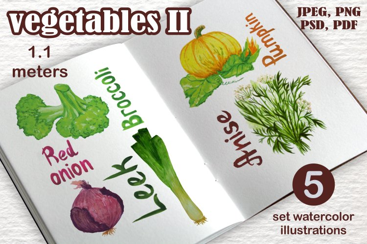 Vegetables 1.1 meters in size example image 1