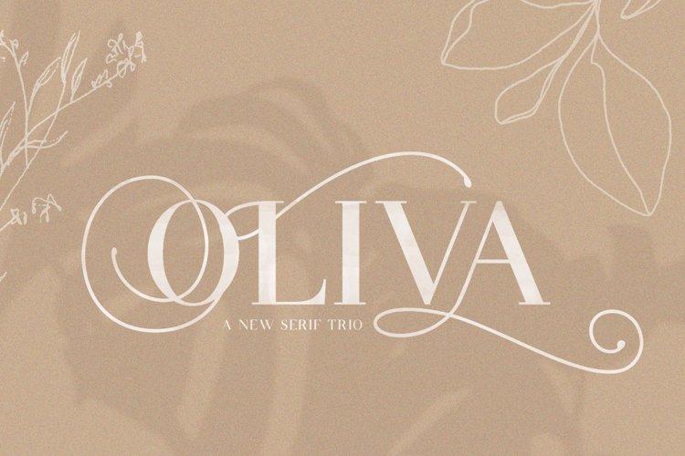 Oliva Serif Font Trio example image 1
