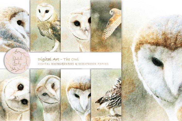 Digital Paintings - The Owl