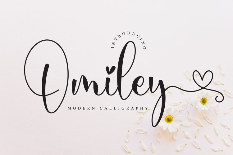 Omiley - Lovely Script Font example image 1