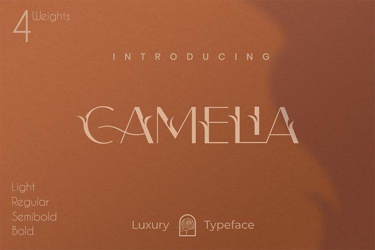 Camelia Sans - Unique Typeface example image 1