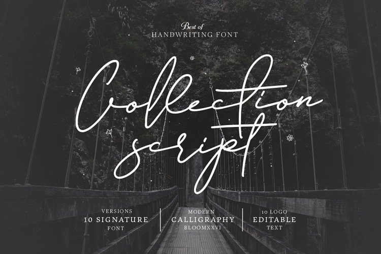 10 Font Script Collection + doodlee art