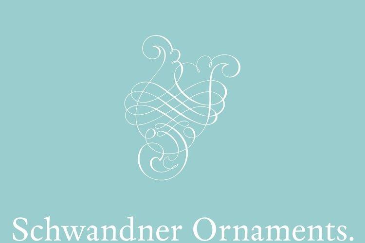 Schwandner Ornaments example image 1