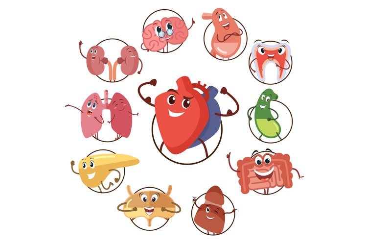 Funny medical icons of organs, heart, lungs, stomach. Set of example image 1