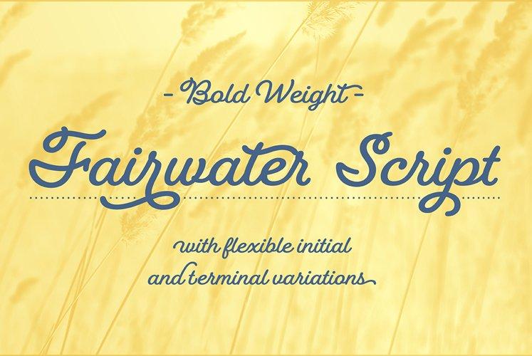 Fairwater Script Bold example image 1