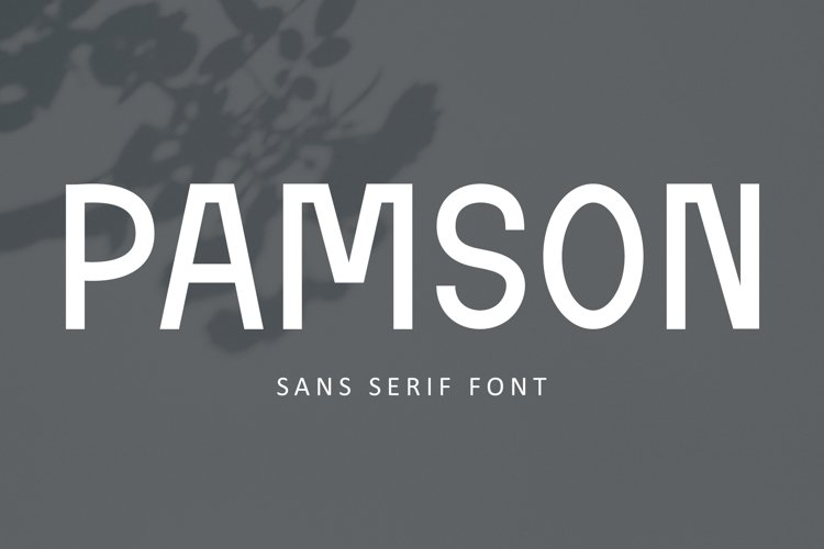 Pamson - Sans Serif Font example image 1
