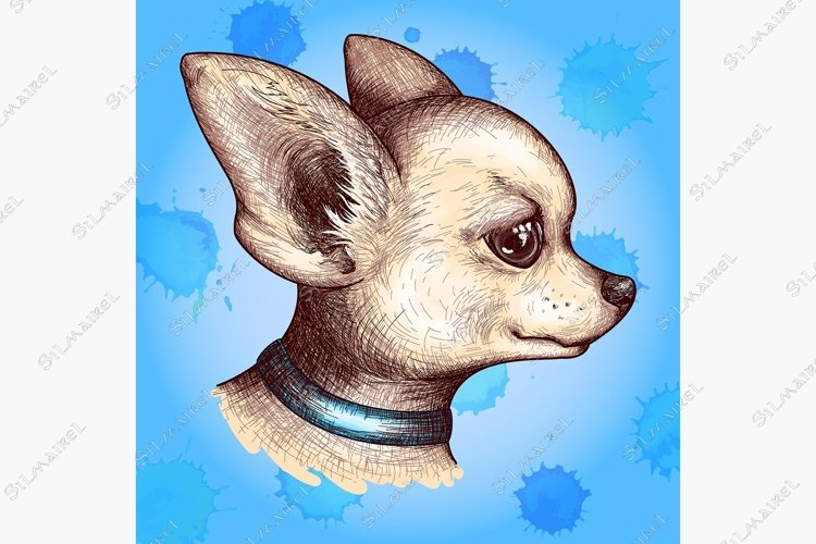 Watercolor portrait head chihuahua dog puppy pet animal art example image 1