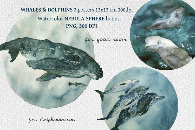Watercolor Dolphins and Whales posters