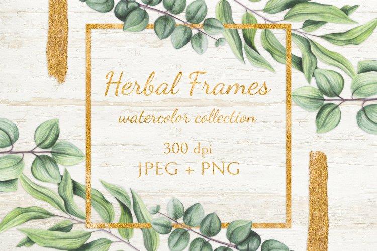 Herbal Frames example image 1