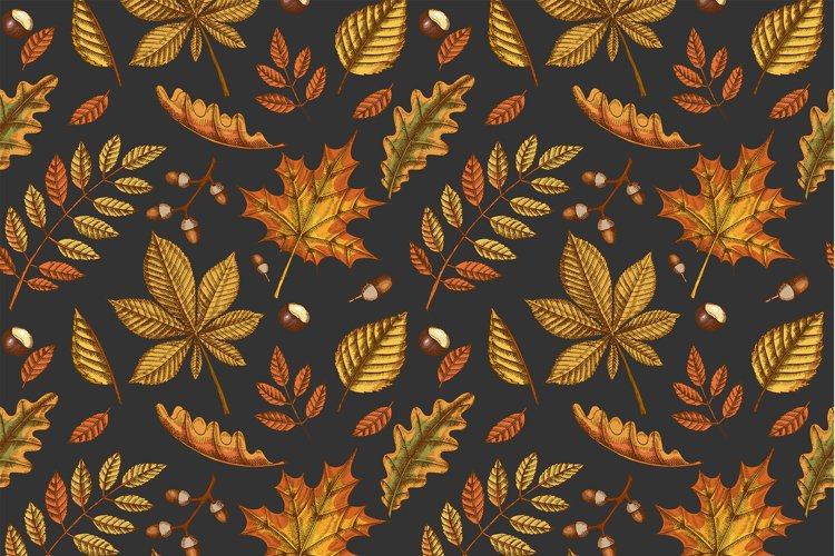 Autumn seamless pattern with Hand drawn leaves example image 1