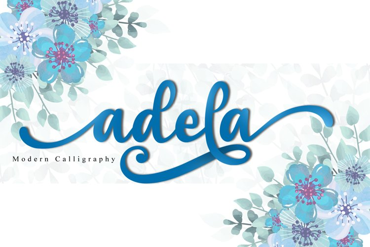 adela example image 1