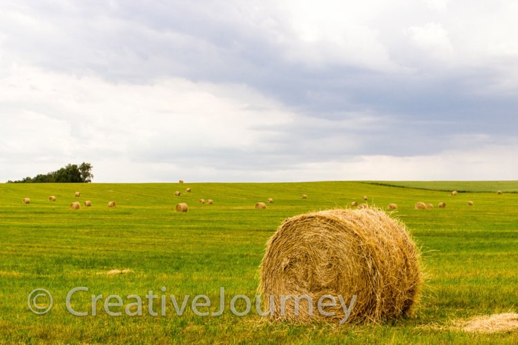 Summer farming background. example image 1