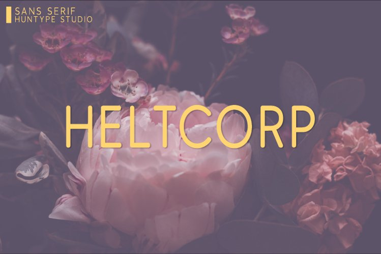 Heltcorp example image 1