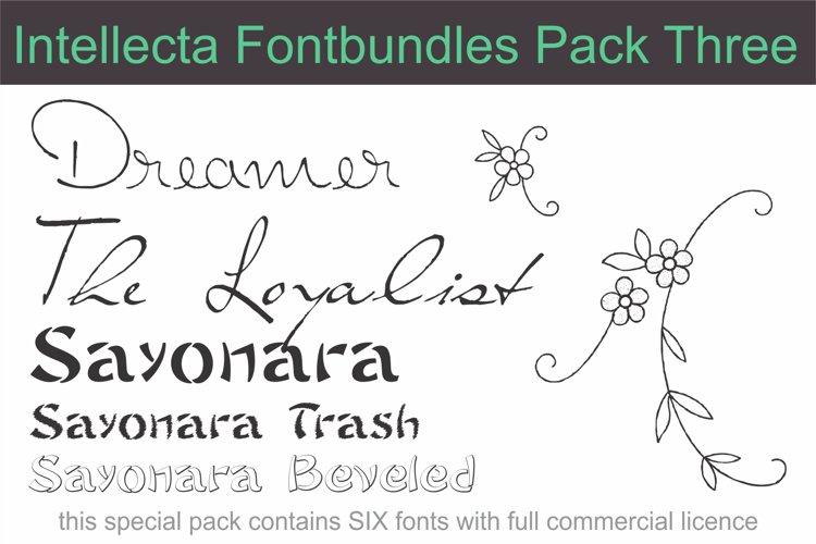 Intellecta Fontbundles Pack Three example image 1